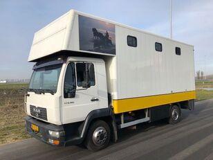 camion chevaux MAN LE8-180