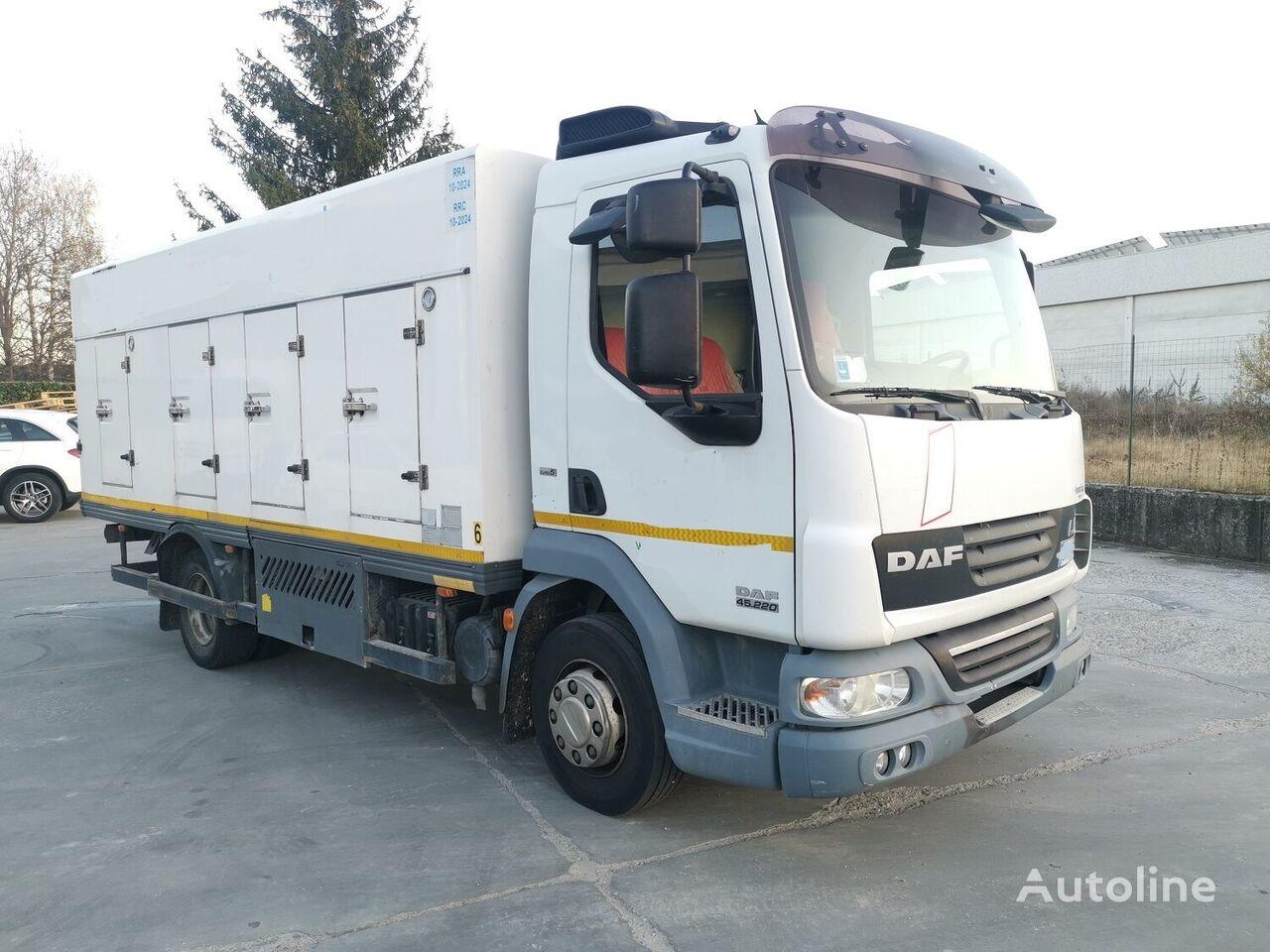 camion à glaces DAF 45.220 SURGELATI ATP 10/2024 - 120QLI