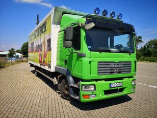 camion isotherme MAN Tgl 12.240